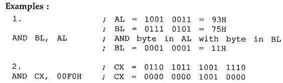 8086 Bit Manipulation Instructions